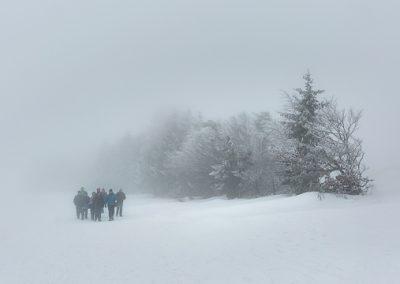 gruppe im nebel schnee