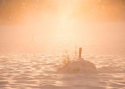 schnee pflog sonne