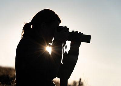 silhouette sonnenstern fotografin