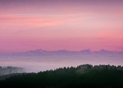 sonnenaufgang wald alpen